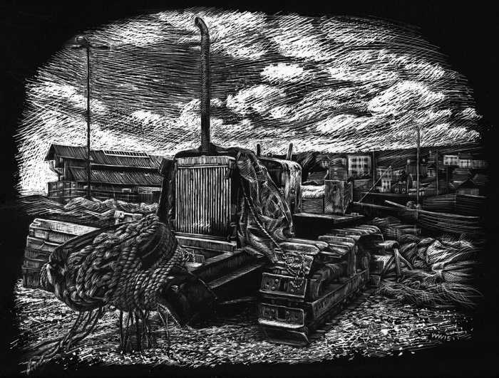 Scraperboard illustration of a Hastings Bulldozer