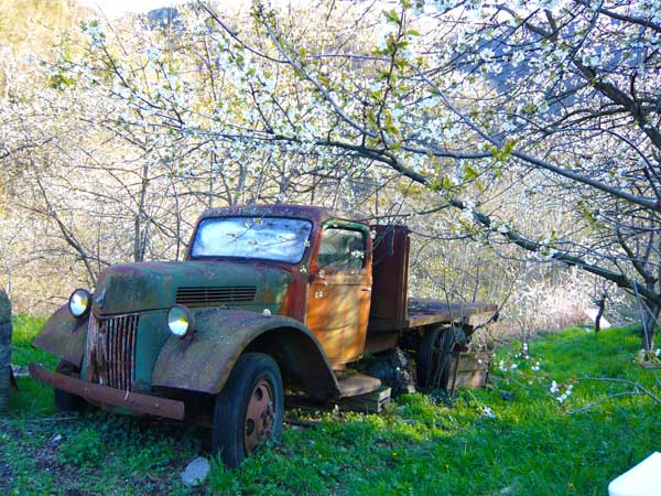 Photograph of Ford Pickup truck
